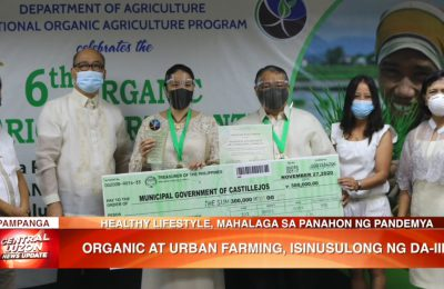 Organic at urban farming, isinusulong ng Department of Agriculture Region 3 | News