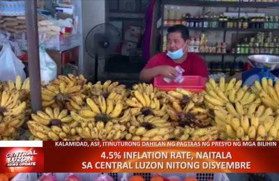 4.5% inflation rate, naitala sa Central Luzon nitong Disyembre