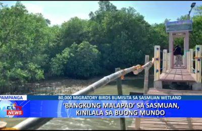 'Bangkung Malapad' sa Sasmuan, kinilala sa buong mundo