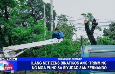 Ilang netizens binatikos ang 'trimming' ng mga puno sa Siyudad San Fernando | Pampanga News
