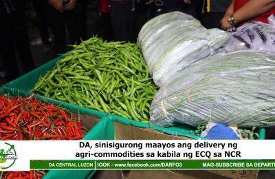 DA, sinisigurong maayos ang delivery ng agri-commodities sa kabila ng ECQ sa NCR   Agri-Balita Central Luzon