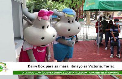 Dairy Box para sa masa, itinayo sa Victoria, Tarlac | Agri-Balita Central Luzon