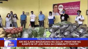 Ani ng ilang magsasaka ng gulay, pinakyaw ng kampo ni VP Leni para sa community pantry