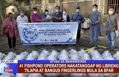 41 fishpond operators nakatanggap ng libreng tilapia at bangus fingerlings mula sa BFAR