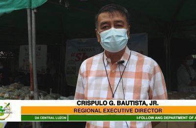 21st International Youth Day, ipinagdiwang ng Department of Agriculture Regional Field Office III | Agri-Balita Central Luzon