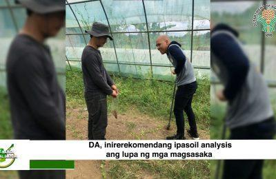 DA, inirerekomendang ipasoil analysis ang lupa ng mga magsasaka | Agri-Balita Central Luzon