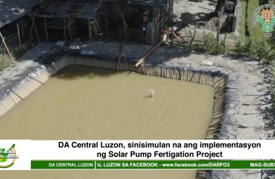 DA Central Luzon, sinisimulan na ang implementasyon ng Solar Pump Fertigation Project | Agri-Balita Central Luzon