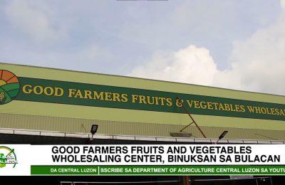Good Farmers Fruits & Vegetables Wholesaling Center, binuksan sa Bulacan | Agri-Balita Central Luzon